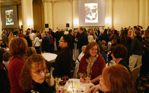 Acoustic Uncorked; Another Doggone Wine Tasting to benefit The Center for Animal Health and Welfare held at Hotel Bethlehem on Sunday night.