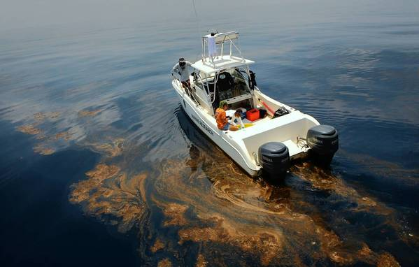 A team of experts works to recover endangered turtles from the oil-tainted Gulf of Mexico in June 2010, two months after the BP spill.