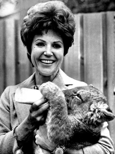 "Pat Derby and a lion cub are shown in 1968 in a promotional image for her NBC-TV show, ""Big Cats, Little Cats."""