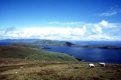 A view from the high point of Dursey Island is classic coastal Ireland, emerald hills sloping to blue water.