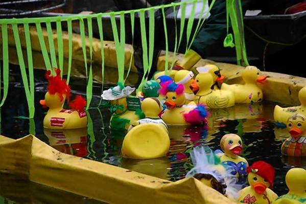 The Great Duck Derby features a series of rubber duck races in Mead Garden's waterways and free family activities from 10 a.m.-2 p.m. Feb. 28.