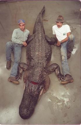 Barry Lardner (left) and Mike Taylor pose with a 14-foot alligator pulled from Lake Monroe.