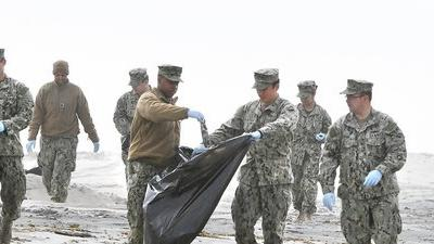 Coronado sailors clean up imperiled birds' nesting areas