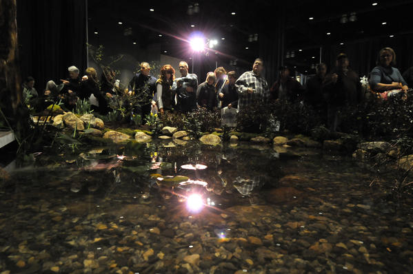 Visitors to the Connecticut Flower and Garden Show at the Connecticut Convention Center pass an elaborate water display designed and built by Aqua Scapes of CT of Portland. The show continues through the weekend.