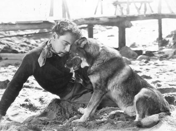 Rin Tin Tin comforts his ma