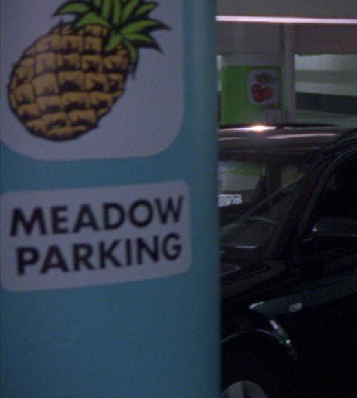 'Psych': The pineapple in (almost) every episode: Theres a pineapple picture marking one section of the parking garage.  Bonus points: The Gus alias is Galileo Humpkins.  Extra bonus points: Gus, dont be a little girl.