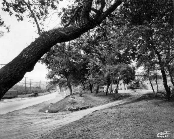 Alexander Nibley opened the Rossmoyne development in the early 1920s on the site of a ranch once owned by Erskine Mayo Ross. Nibley's goal was to provide a place where homes could nestle in the foothills, far from the hustle and bustle of downtown Los Angeles. Photo ca 1924.