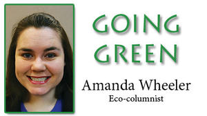 Going Green: Animals, domestic and wild, can be affectionate, too