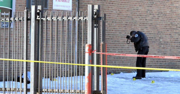 Police investigate the apparent shooting death of a man found in the parking lot of Rothschild Liquors on Cicero Avenue near Adams Street on Sunday morning.