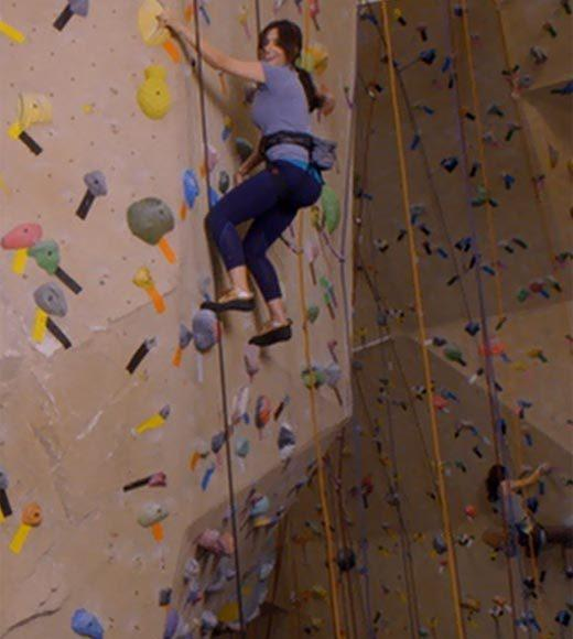 'Psych': The pineapple in (almost) every episode: Theres a pineapple foothold on the climbing wall.  Extra bonus points: Gus, dont be the new Meshach Taylor.