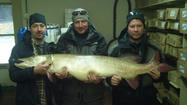 CHARLEVOIX — A Great Lakes muskellunge previously named a state record has now been listed as a world record by a group called the International Committee of the Modern Day Muskellunge World Record Program.
