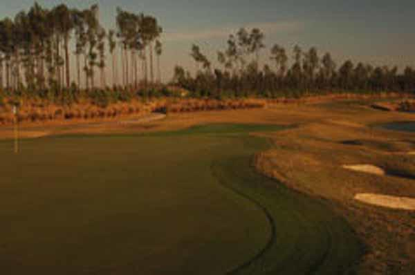 Delicately carved out of a pine forest, the course at St. Johns offers five sets of tees plus a family tee.