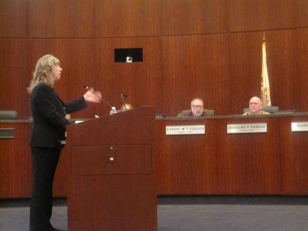 Naperville Finance Director Karen DeAngelis reviews the fiscal year 2014 budget as Councilmen Bob Fieseler and Doug Krause look on.