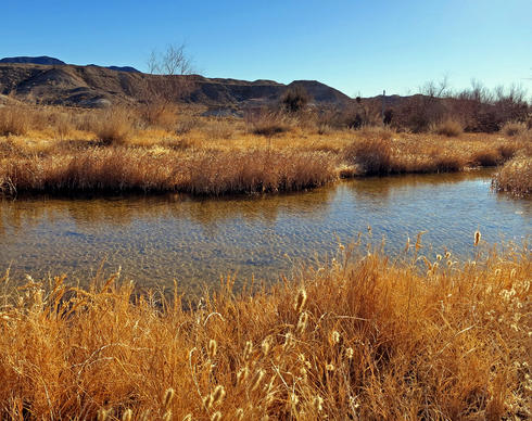 Visitors can follow the Amargosa River from an old divining trail.
