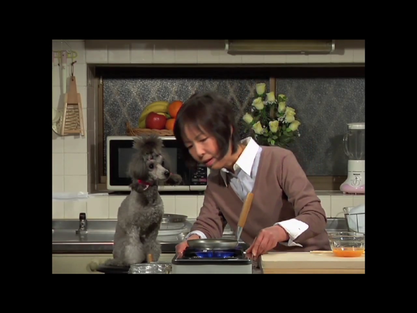 "Learn to make oyakodon (chicken egg drop donburi) on the Japanese web series ""Cooking with Dog."""