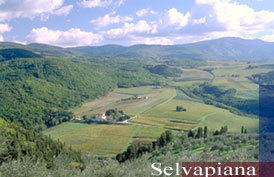 The Selvapiana estate in Italy's Chianti Rufina region.