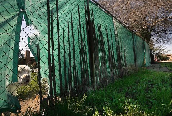 A pit bull snarls from its side of the fence next to a tiny strip of land being turned into a park that will force sex offenders to move out of the neighborhood.