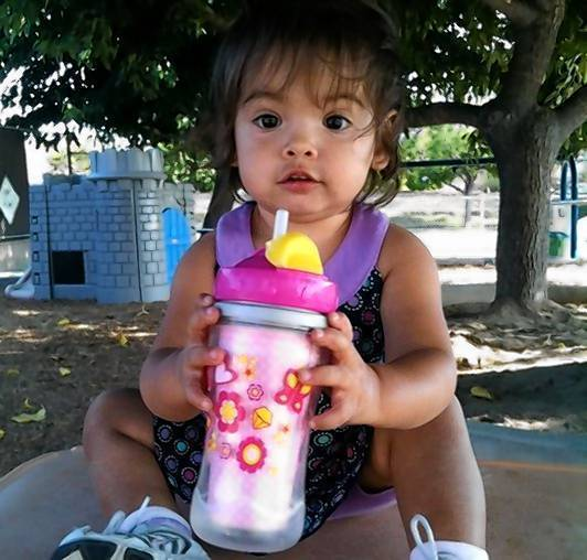 "Vyctorya Sandoval died at 25 months old after ""obvious indications of physical abuse were either ignored or not noticed"" by Department of Children and Family Services social workers, an investigation found."