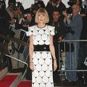 "Anna Wintour ""The Model as Muse: Embodying Fashion"" Costume Institute Gala"