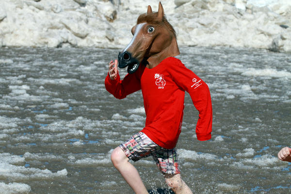A man wearing a horse's head is one of the people who braved the 32-degree water temperature at North Avenue beach to benefit the Chicago Special Olympics Sunday.