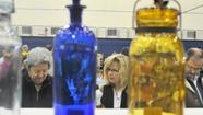History's throwaways and discards emerged as coveted attractions Sunday when bottles, vials and flasks that spent decades buried in dumps and privies returned in translucent glory.