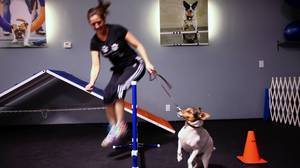 Exercise class welcomes dogs too
