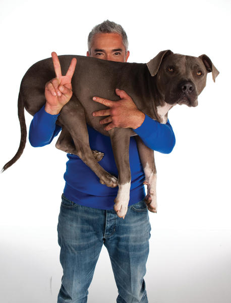 Dog trainer Cesar Millan will share his secrets on how to transform dogs and their owners at 8 p.m. Saturday, March 9, at Shippensburg University's H. Ric Luhrs Performing Arts Center, 1871 Old Main Drive, Shippensburg, Pa.