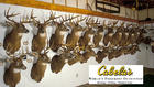 Cabela's Hunting Trophies