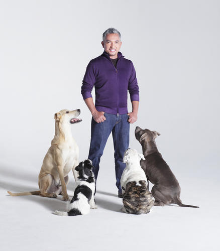 Cesar Millan, perhaps the best known dog trainer in the world, will share some of his secrets at 8 p.m. March 8 at State Theatre, Easton.