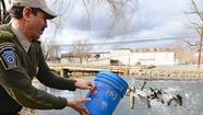 Last weekend marked the first official sign of spring for outdoorsmen in the area — the annual beginning of trout stocking in Southeastern Pennsylvania waters.