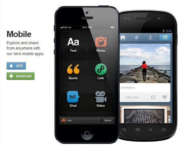 Tumblr said it will roll out mobile ads at some point in the first half of 2013.