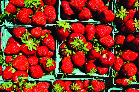 Strawberries from Brad's Produce in Churchville