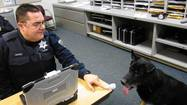 Tinley police dog puts in his papers
