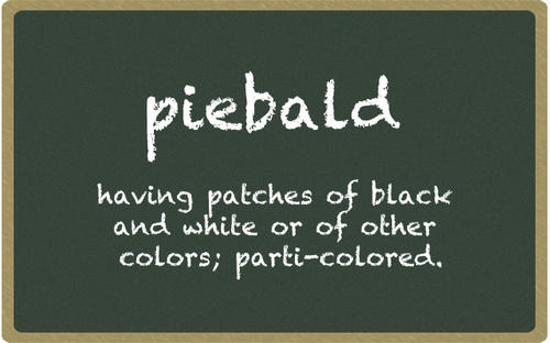 In 2005, Priyanka Chavan, then in 5th grade at Fulton Elementary School, won by spelling the word piebald.
