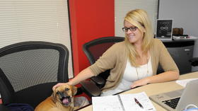 Study says dogs at work lower humans' stress