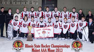Chicago Mission hockey teammates from Hinsdale,win state title Saturday March 2 in Lisle Vs Team Illinois