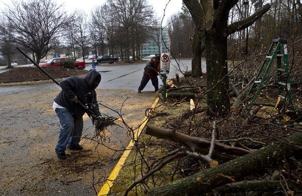 Grounds workers remove old trees and brush to clean up the hotel grounds. The former Newport News Omni Hotel is being turned into the Magnuson Hotel.  The restaurant, pool area, grounds and rooms will undergo renovations under the hotel's new ownership.