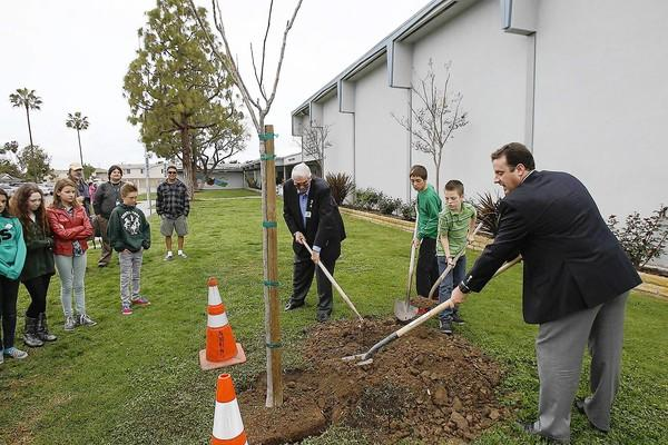 Bill Hossfeld, left, and A.J. Thielen with the Newport-Balboa Rotary Club fill in dirt around a flame tree with students Teak Zachary, 12, and Matthew Ashley, 11, at Sonora Elementary School on Thursday. The school celebrated Arbor Day with a Flag Deck presentation and tree planting. Rotary donated the tree.