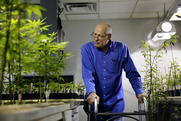 L.A. City Councilman Bill Rosendahl is shown at the Herbalcure pot dispensary. He says his medical marijuana regimen wiped out the cancer pain that once had him writhing in bed, incapacitated.
