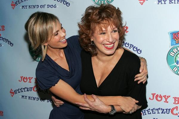 "Elisabeth Hasselbeck, left, and Joy Behar (seen here in 2006) are both leaving ABC's talk show ""The View."""