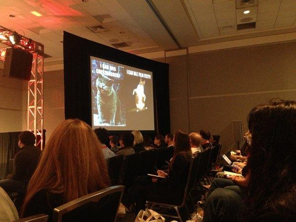 A panel at South by Southwest was devoted entirely to viral cat videos and bringing online communities offline.