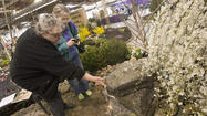 Lehigh Valley Flower & Garden Show