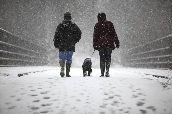 A couple walk their dog in the snow in Crawley, United Kingdom. Snowfall is affecting Southern parts of the UK with yellow severe weather warnings issued for London and South-East England.