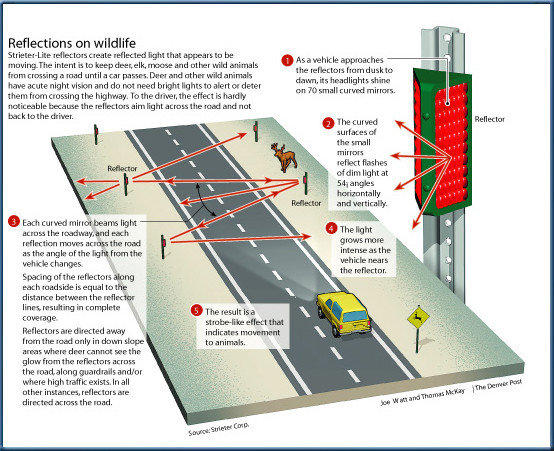Wyoming officials hope specially designed reflectors will prevent car crashes involving deer crossing highways.