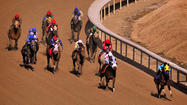 Ten horses were injured and euthanized at Laurel Park over nearly six weeks this year, prompting the state to investigate why the rate of deaths at the racetrack had spiked so drastically and suddenly.