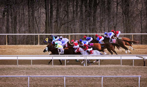 The ten horses euthanized because of injuries at Laurel Park between Jan. 9 and Feb. 15 this year -- during only 23 of the 140 racing days scheduled for 2013 -- equals the total number euthanized at the track during all of 2011.