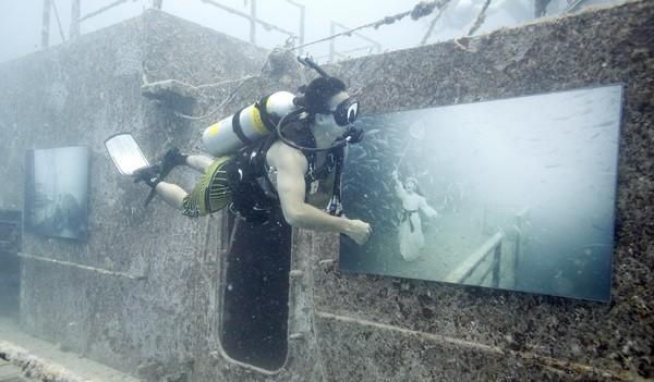 A diver examines photographs by Austrian photographer Andreas Franke along the deck of Gen. Hoyt S. Vandenberg artificial reef on August 4, 90 feet deep in the Florida Keys National Marine Sanctuary off Key West, Florida.