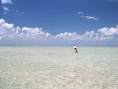 Fly fishing in Punta Allen, Mexico