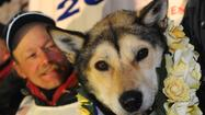 Mitch Seavey, 53, won the Iditarod Trail Sled Dog Race late Tuesday night to become the oldest winner in the race's history.