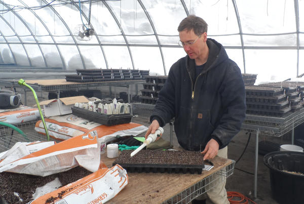 David Coveyou of Coveyou Scenic Farm Market seeds flats for his greenhouse.